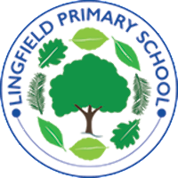 Lingfield Primary School Association